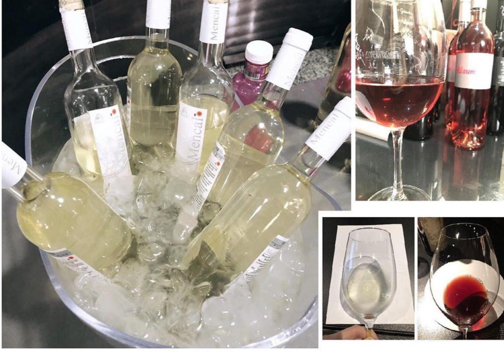 Catas de vino de Granada en Almazara Laerilla